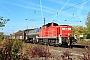 """Jung 14146 - DB Cargo """"294 800-8"""" 05.10.2018 - DieburgKurt Sattig"""